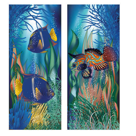 sub tropical: Underwater banners and tropicals fish, vector illustration