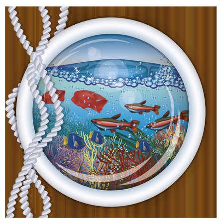oceanography: Ship porthole tropical underwater background  vector illustration Illustration