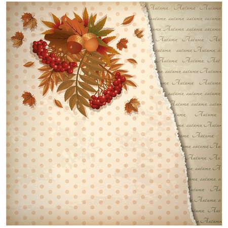 scrap: Autumn old background in scrap style, vector illustration Illustration