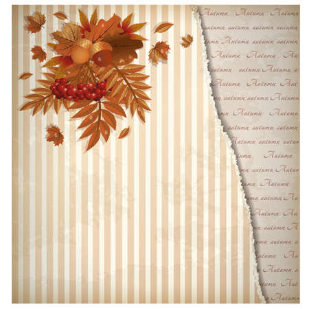 scrapping: Autumn vintage background in scrapping style, vector illustration Illustration