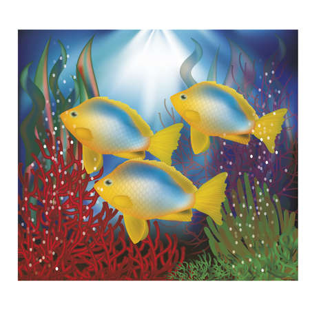 seawater: Underwater wallpaper with tropical fish, vector illustration