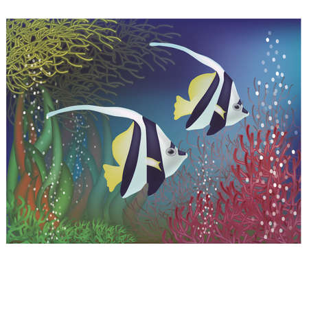 sub tropical: Underwater background with bannerfish, vector illustration Illustration