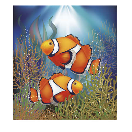 sea anemone: Underwater wallpaper with clownfish, vector illustration Illustration