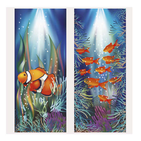 anemonefish: Underwater banners with clownfish, vector illustration Illustration
