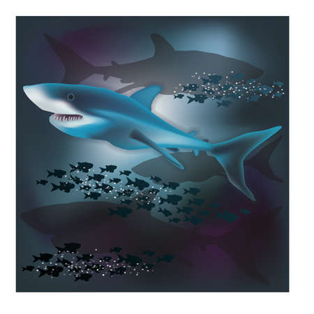 sub tropical: Underwater wallpaper with White Shark, vector illustration