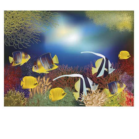 ecosistema: fondo de pantalla bajo el agua con peces tropicales Vectores
