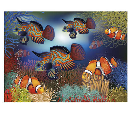 seawater: Underwater banner with tropical fish, illustration