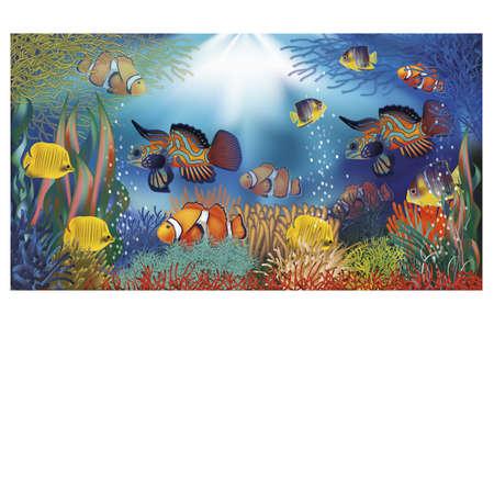 bandera bajo el agua con peces tropicales, ilustración