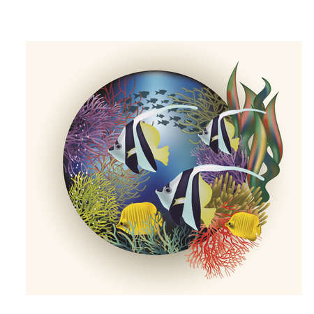 sub tropical: Underwater card with  tropical fish, illustration Illustration