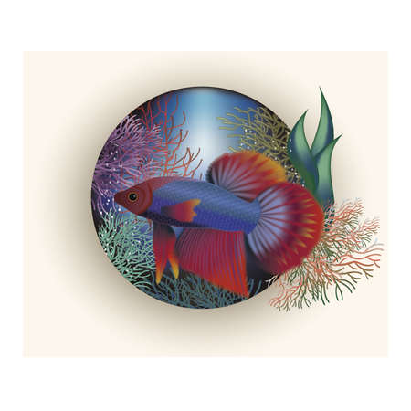 lagoon: Underwater card with tropical fish, vector illustration