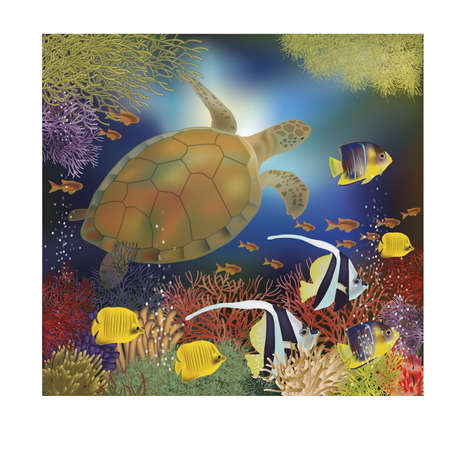 sub tropical: Underwater wallpaper with sea turtle, illustration