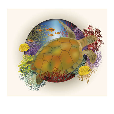 sub tropical: Underwater card with sea turtle,  illustration