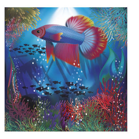 seafish: Underwater wallpaper with well fish, illustration