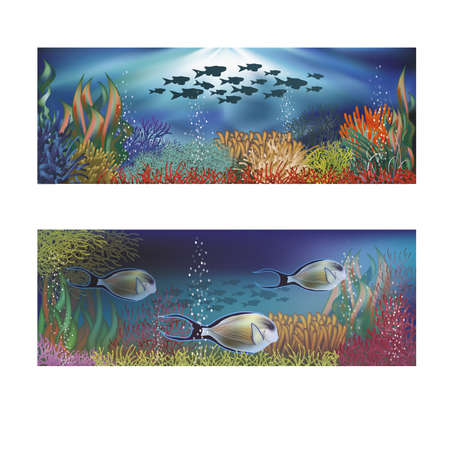 surgeonfish: Underwater banners with tropical fish