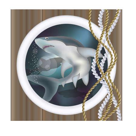 Underwater ship porthole with shark