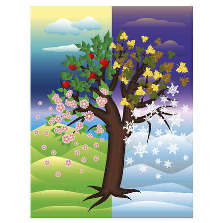 Seasons decoratieve boom achtergrond, vector illustratie