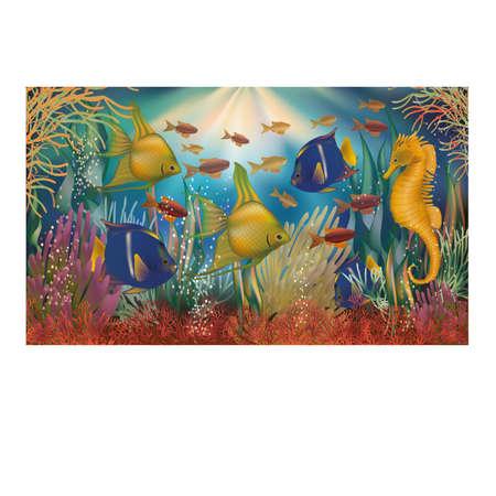Underwater tropical background, vector illustration