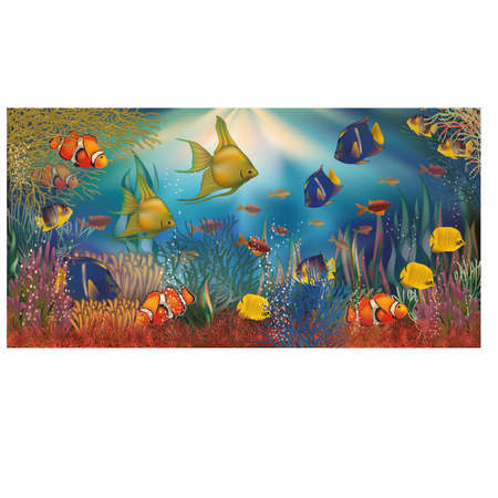 sub tropical: Underwater background with tropical fish, vector illustration