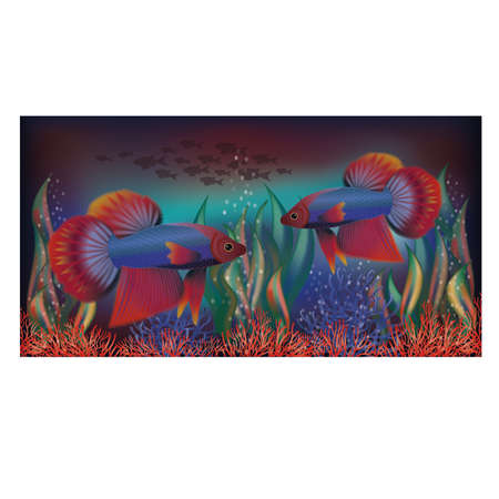 sub tropical: With tropical fish underwater wallpaper, vector illustration