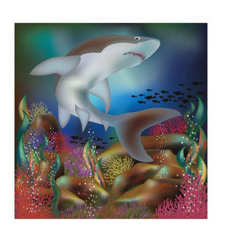 Underwater background with shark, vector illustration.