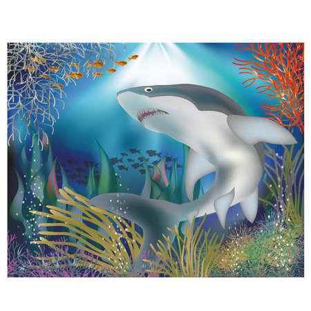 Underwater wallpaper With shark, vector illustration
