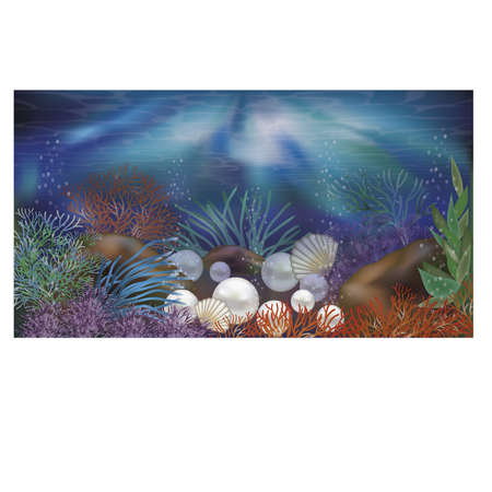 Underwater tropical wallpaper with pearls, vector illustration