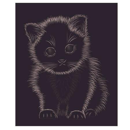 silueta de gato: Little kitten black and white, vector illustration