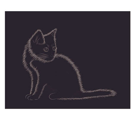 Little fluffy cat black and white, vector illustration