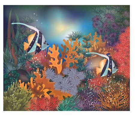 Underwater tropical card with Moorish idol fish, vector illustration