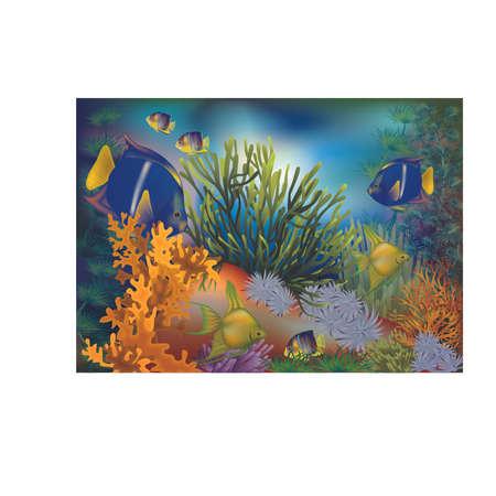 Underwater tropical card, vector illustration.