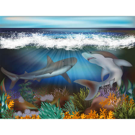 Underwater tropical background with Sharks, vector illustration