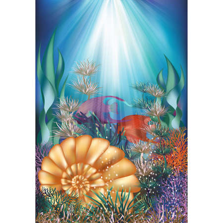 Underwater card with shell and tropical fish, vector illustration