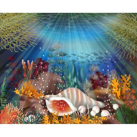 Underwater banner with tropical shell, vector illustration
