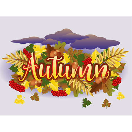 Autumn time season card, vector illustration