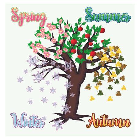 Four seasons tree banner, vector illustration