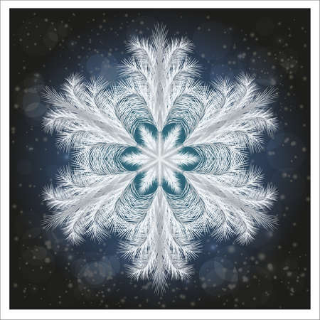 Winter frosted snowflake banner, vector illustration