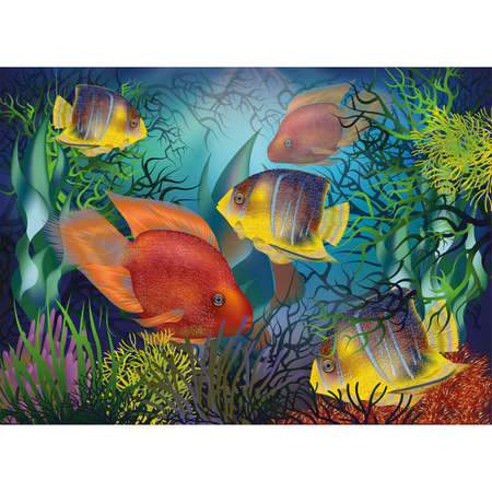 Underwater background with tropical fish, Red Parrot and Royal angelfish, vector illustration