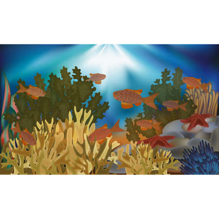 Underwater wallpaper with algae, starfish and tropical fish, vector illustration