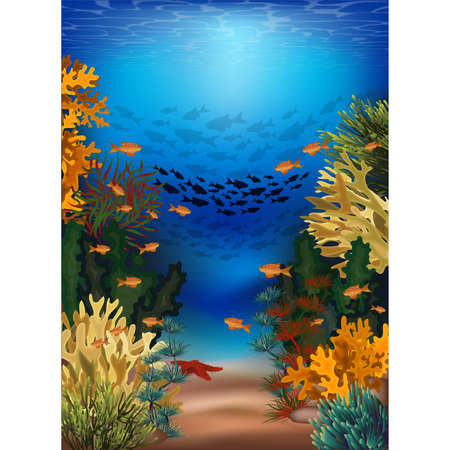Underwater banner with algae and tropical fish, vector illustration