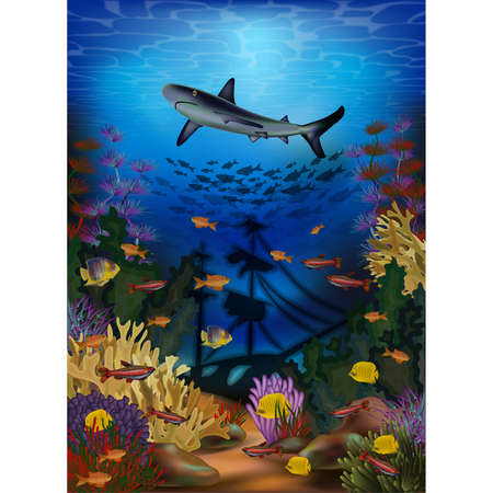 Underwater wallpaper with shark and sunken ship, vector illustration Illustration
