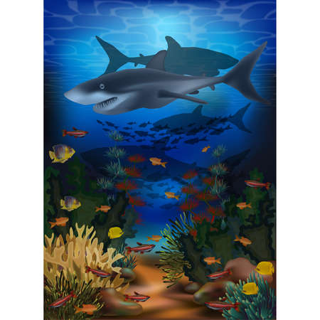 Underwater background with shark and tropical fish, vector illustration