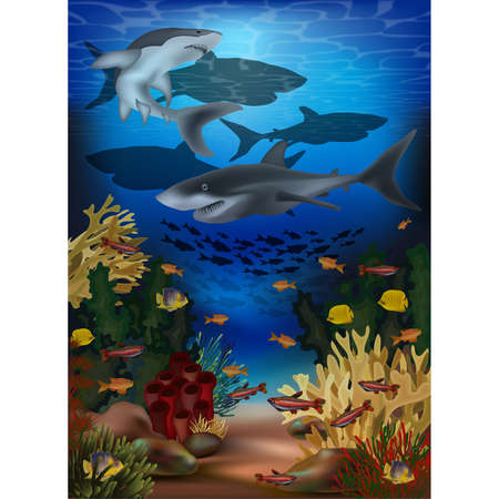 Underwater banner with sharks and tropical fish, vector illustration