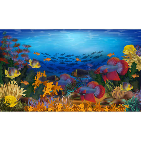 Underwater wallpaper with tropical fish and algae, vector illustration  イラスト・ベクター素材