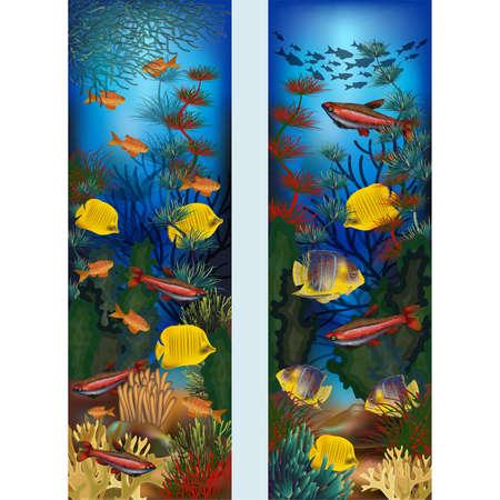 Banners verticales submarinos con algas y peces tropicales, ilustración vectorial