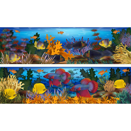 Underwater horizontal banners with algae and tropical fish, vector illustration