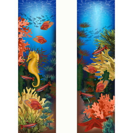 Underwater vertical banners with starfish and seahorse, vector illustration