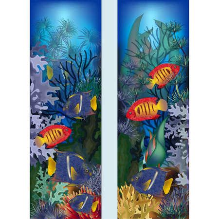 Banners verticales submarinos con peces tropicales, ilustración vectorial