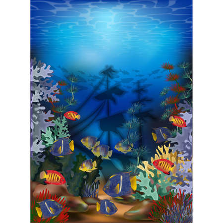 Underwater card with algae, tropical fish and sunken ship, vector illustration