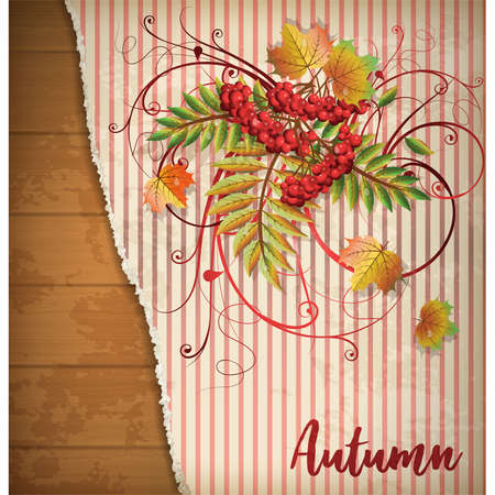 Autumn greeting card with maple leaves, vector illustration