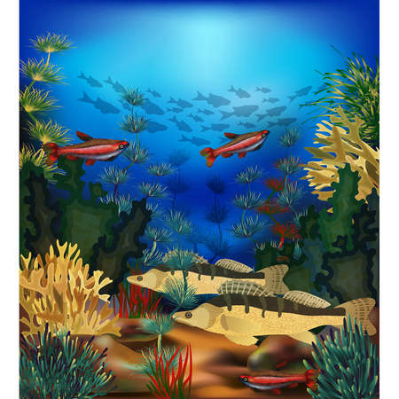 Underwater beautiful landscape  with tropical fish, vector illustration Vettoriali